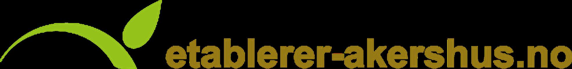 Etablerertjenesten-logo