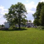 Foto fra juni 2016 på baksiden med urtehage, gressplen og eikeskog. Foto: mmj - juni